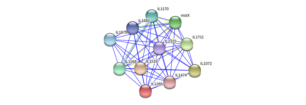 IL1265 protein (Idiomarina loihiensis) - STRING interaction network