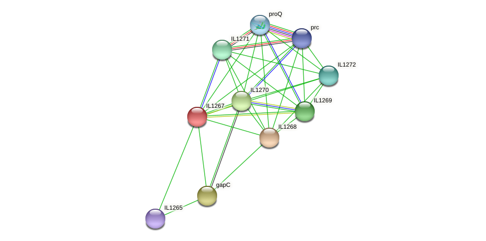 IL1267 protein (Idiomarina loihiensis) - STRING interaction network