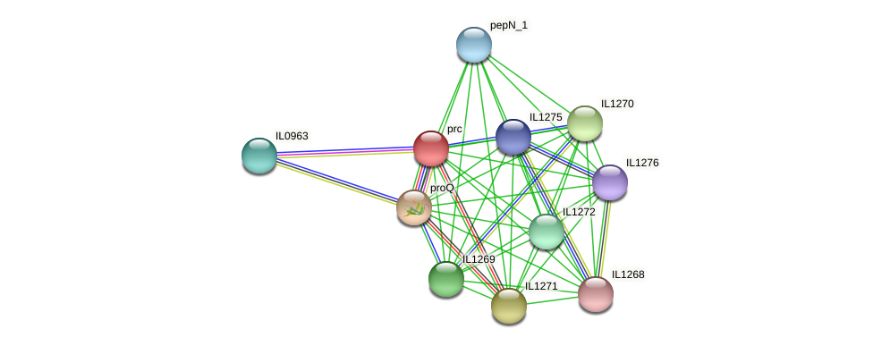 prc protein (Idiomarina loihiensis) - STRING interaction network