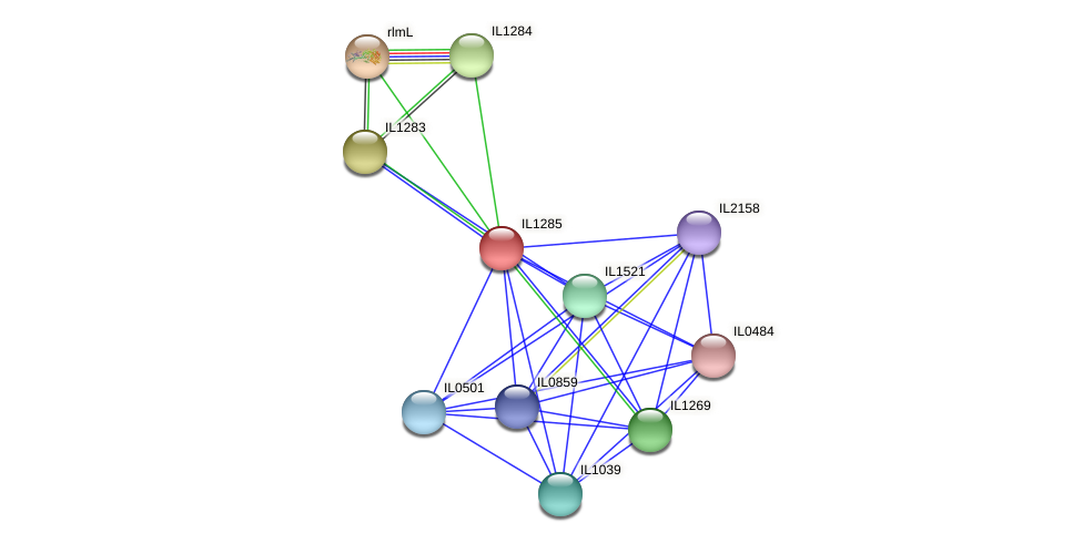 IL1285 protein (Idiomarina loihiensis) - STRING interaction network