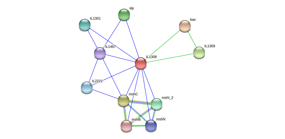 IL1308 protein (Idiomarina loihiensis) - STRING interaction network