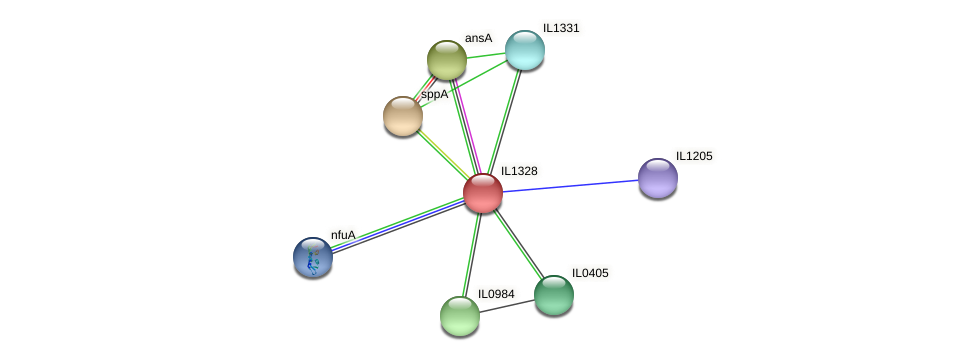 IL1328 protein (Idiomarina loihiensis) - STRING interaction network
