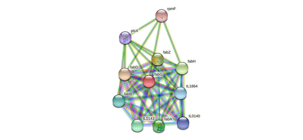 fabG protein (Idiomarina loihiensis) - STRING interaction network