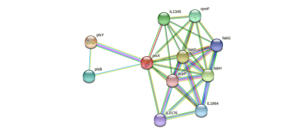 plsX protein (Idiomarina loihiensis) - STRING interaction network