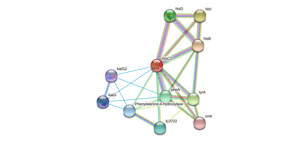 hisC1 protein (Idiomarina loihiensis) - STRING interaction network
