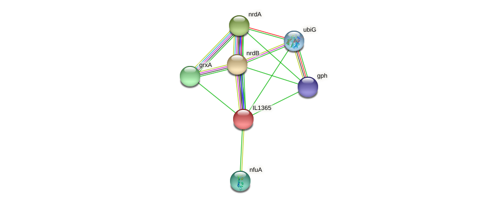 IL1365 protein (Idiomarina loihiensis) - STRING interaction network