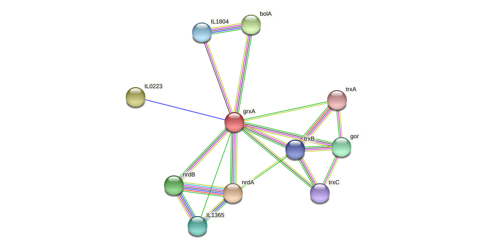 grxA protein (Idiomarina loihiensis) - STRING interaction network
