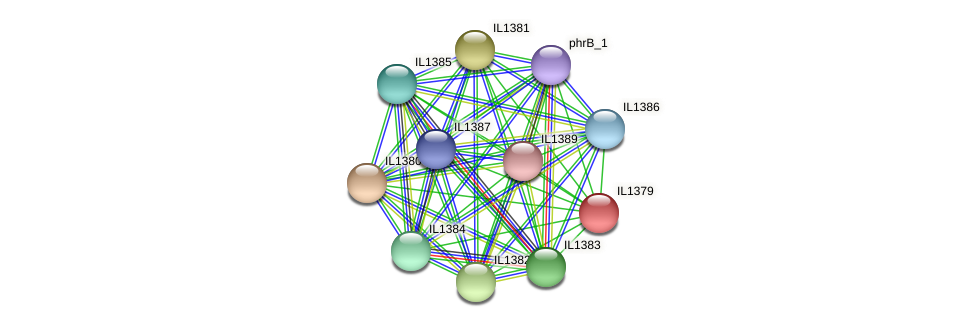 IL1379 protein (Idiomarina loihiensis) - STRING interaction network