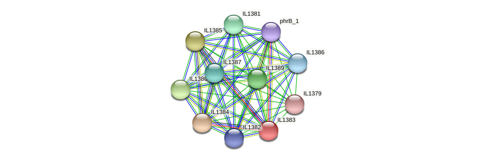IL1383 protein (Idiomarina loihiensis) - STRING interaction network