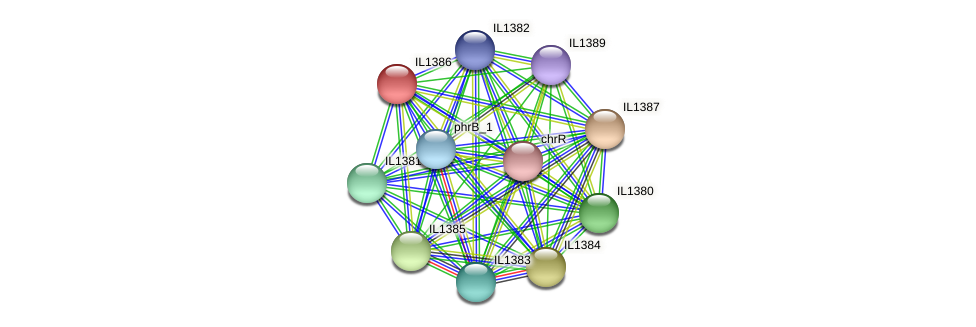 IL1386 protein (Idiomarina loihiensis) - STRING interaction network