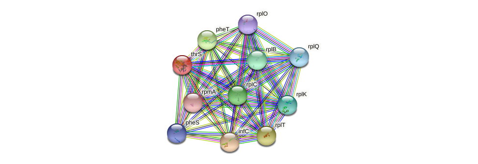 thrS protein (Idiomarina loihiensis) - STRING interaction network
