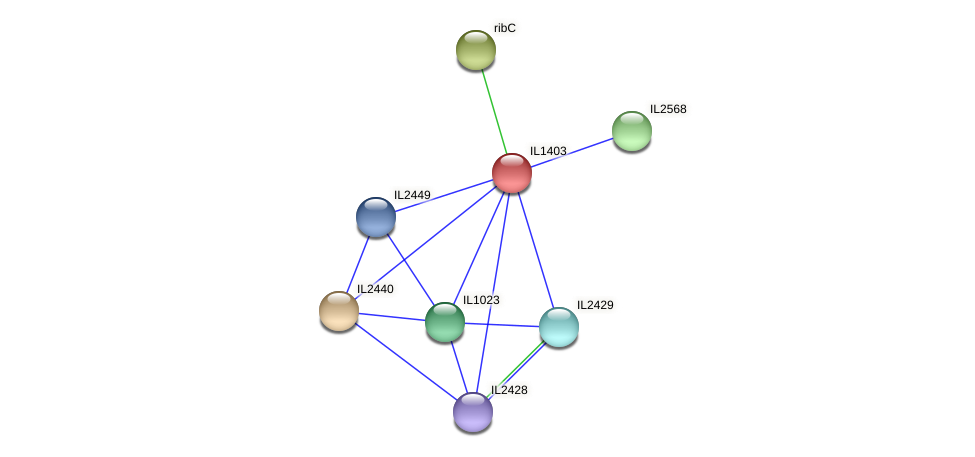 IL1403 protein (Idiomarina loihiensis) - STRING interaction network