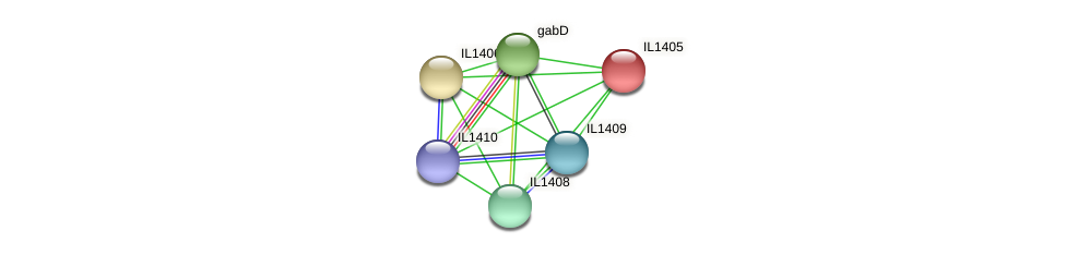 IL1405 protein (Idiomarina loihiensis) - STRING interaction network