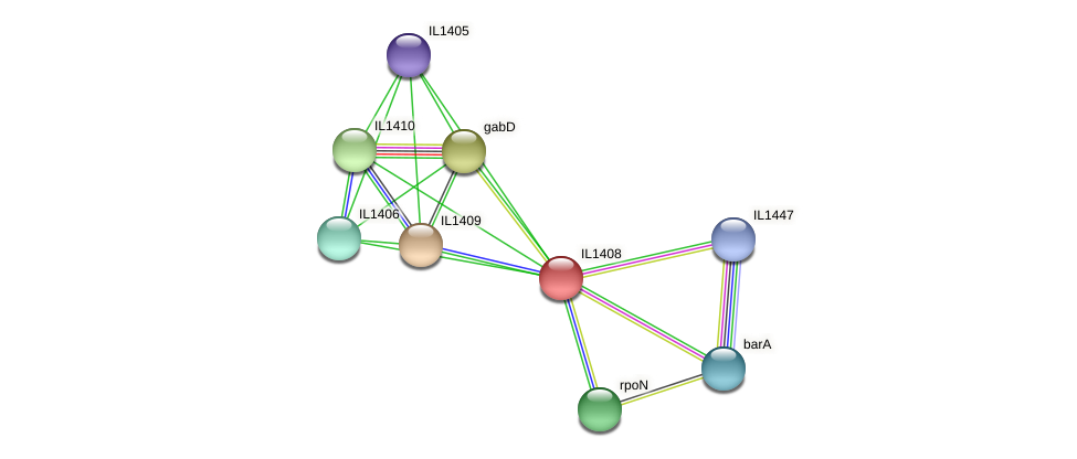IL1408 protein (Idiomarina loihiensis) - STRING interaction network