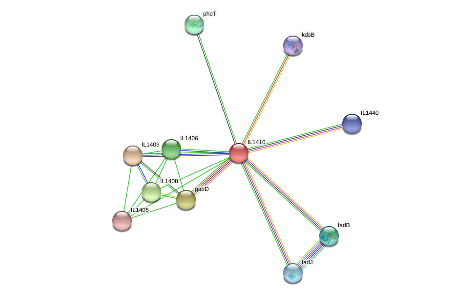 IL1410 protein (Idiomarina loihiensis) - STRING interaction network