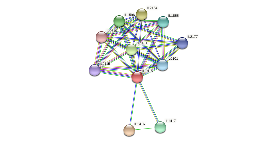 IL1415 protein (Idiomarina loihiensis) - STRING interaction network