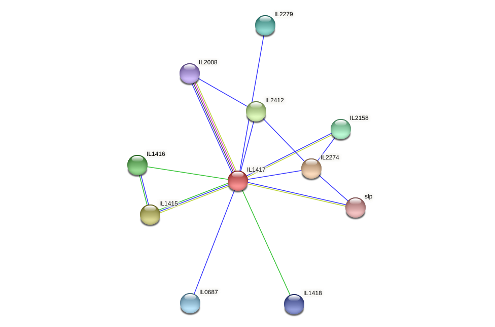 IL1417 protein (Idiomarina loihiensis) - STRING interaction network