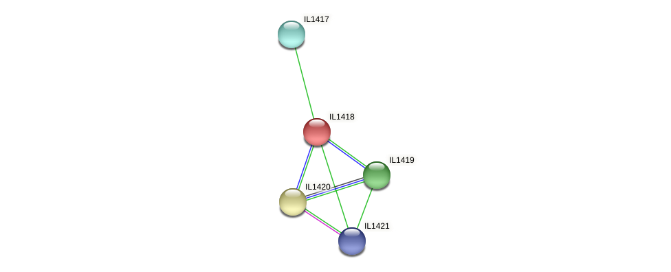 IL1418 protein (Idiomarina loihiensis) - STRING interaction network