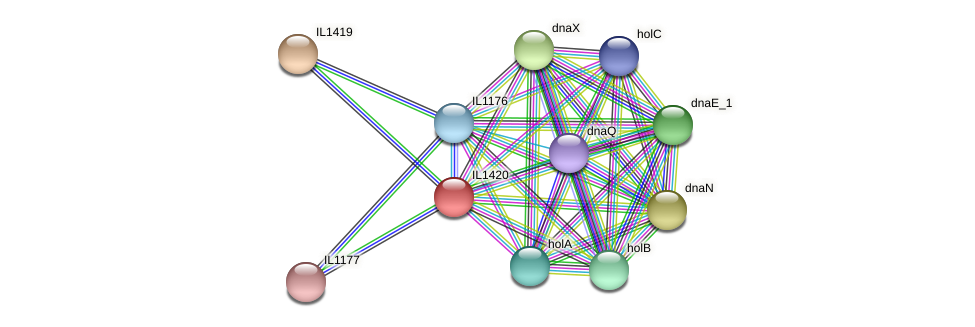 IL1420 protein (Idiomarina loihiensis) - STRING interaction network