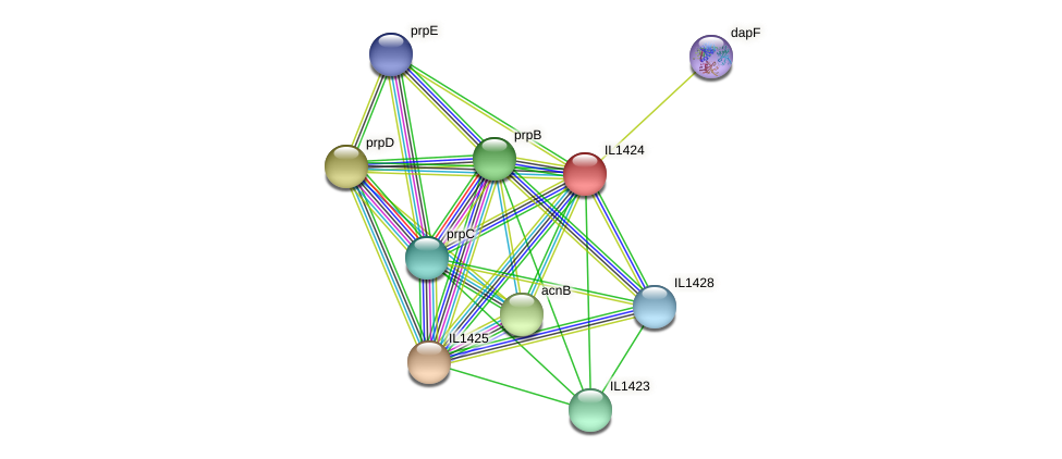 IL1424 protein (Idiomarina loihiensis) - STRING interaction network