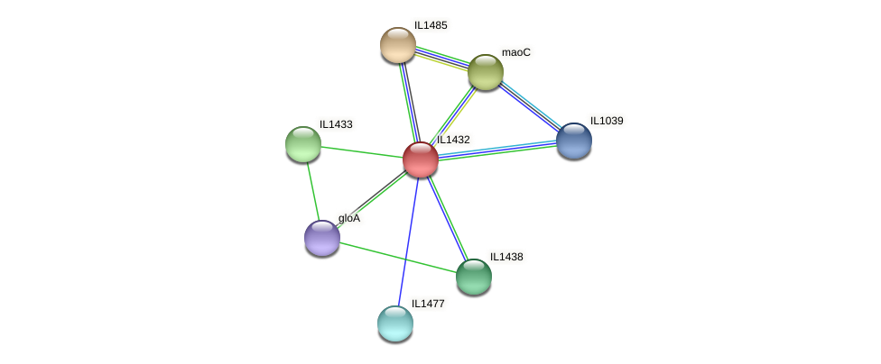 IL1432 protein (Idiomarina loihiensis) - STRING interaction network