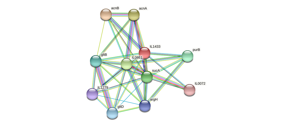 IL1433 protein (Idiomarina loihiensis) - STRING interaction network