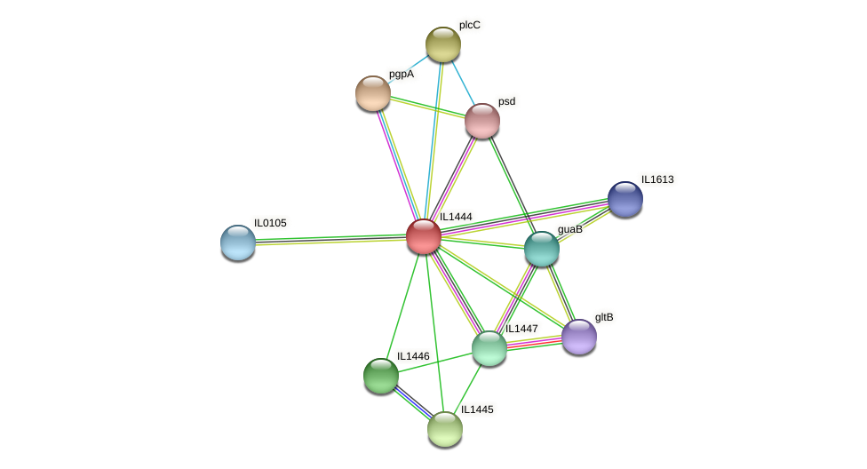 IL1444 protein (Idiomarina loihiensis) - STRING interaction network