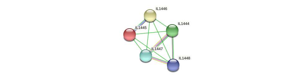 IL1445 protein (Idiomarina loihiensis) - STRING interaction network