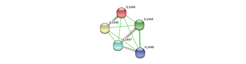IL1446 protein (Idiomarina loihiensis) - STRING interaction network