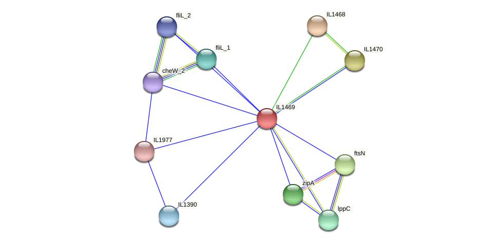 IL1469 protein (Idiomarina loihiensis) - STRING interaction network