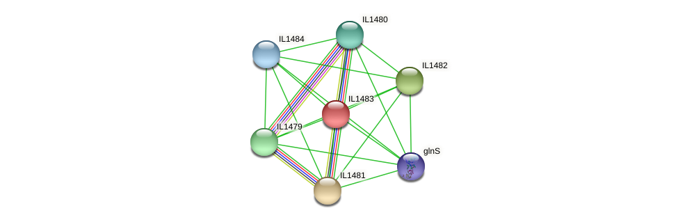 IL1483 protein (Idiomarina loihiensis) - STRING interaction network