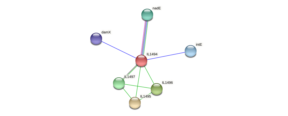 IL1494 protein (Idiomarina loihiensis) - STRING interaction network