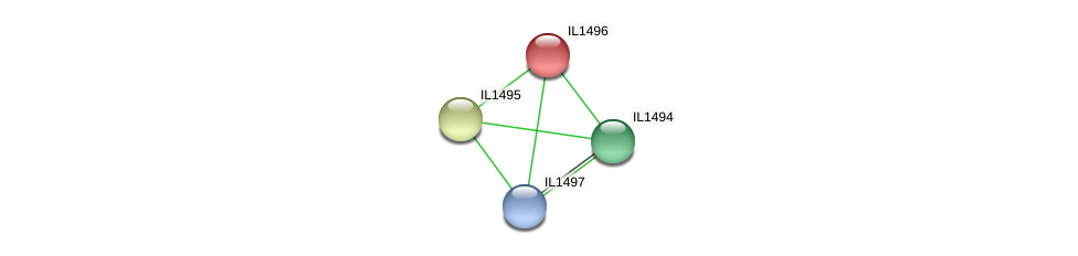IL1496 protein (Idiomarina loihiensis) - STRING interaction network