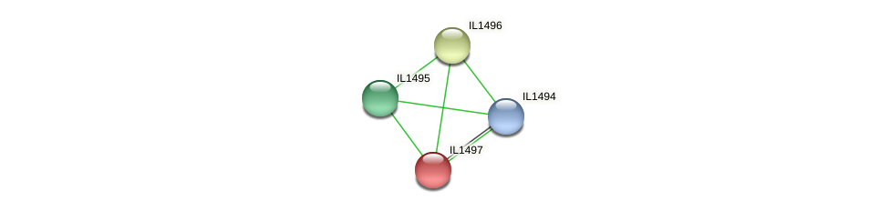 IL1497 protein (Idiomarina loihiensis) - STRING interaction network