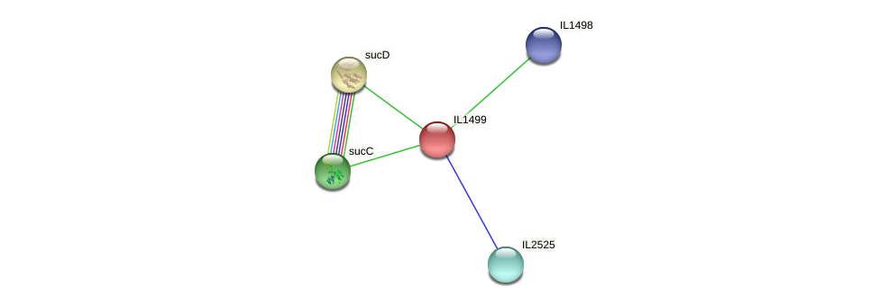 IL1499 protein (Idiomarina loihiensis) - STRING interaction network