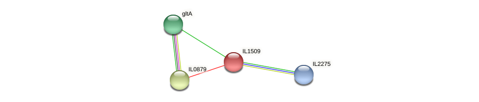 IL1509 protein (Idiomarina loihiensis) - STRING interaction network