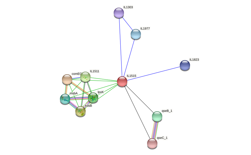 IL1515 protein (Idiomarina loihiensis) - STRING interaction network