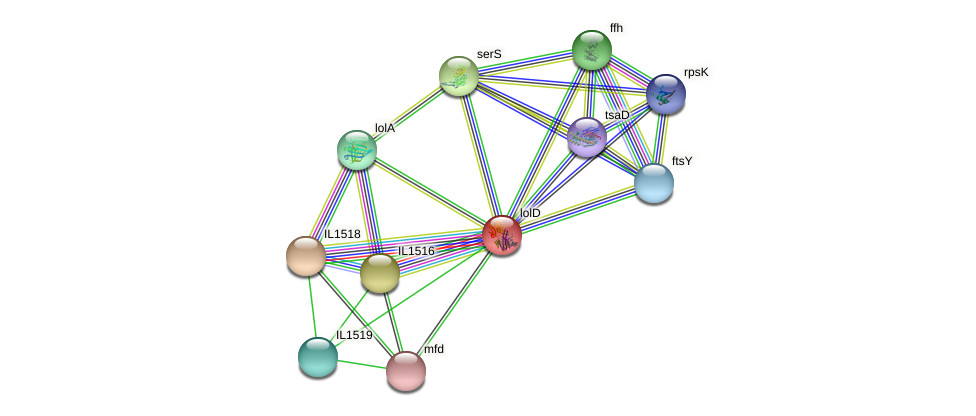 lolD protein (Idiomarina loihiensis) - STRING interaction network