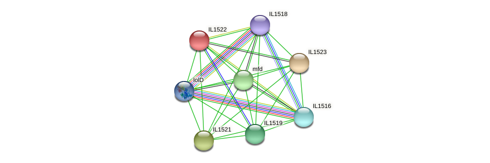 IL1522 protein (Idiomarina loihiensis) - STRING interaction network