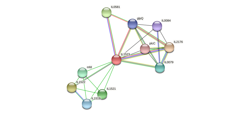 IL1523 protein (Idiomarina loihiensis) - STRING interaction network