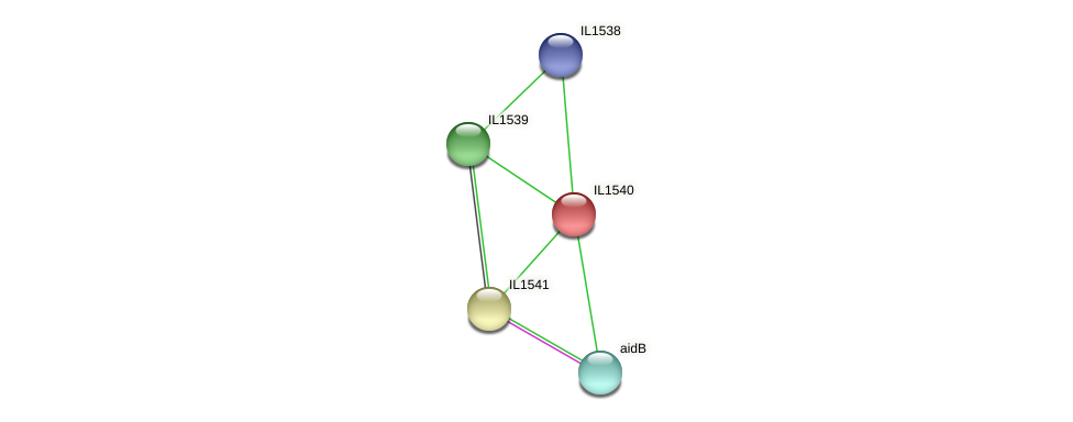 IL1540 protein (Idiomarina loihiensis) - STRING interaction network