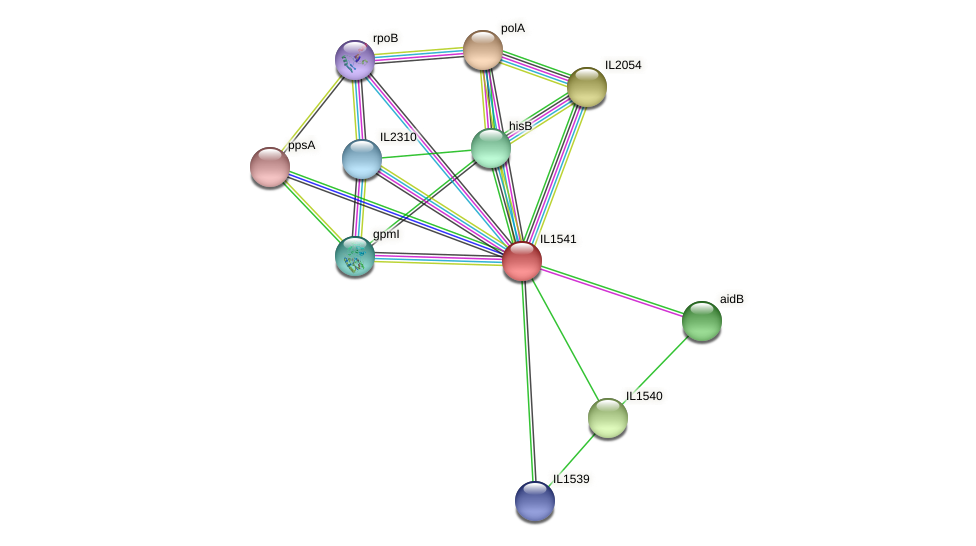 IL1541 protein (Idiomarina loihiensis) - STRING interaction network