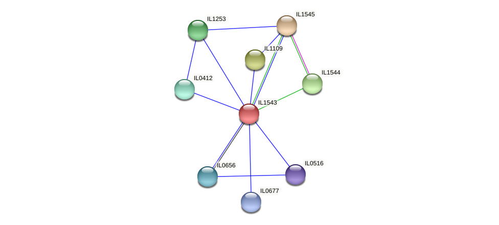IL1543 protein (Idiomarina loihiensis) - STRING interaction network