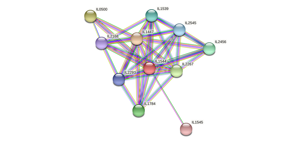 IL1544 protein (Idiomarina loihiensis) - STRING interaction network