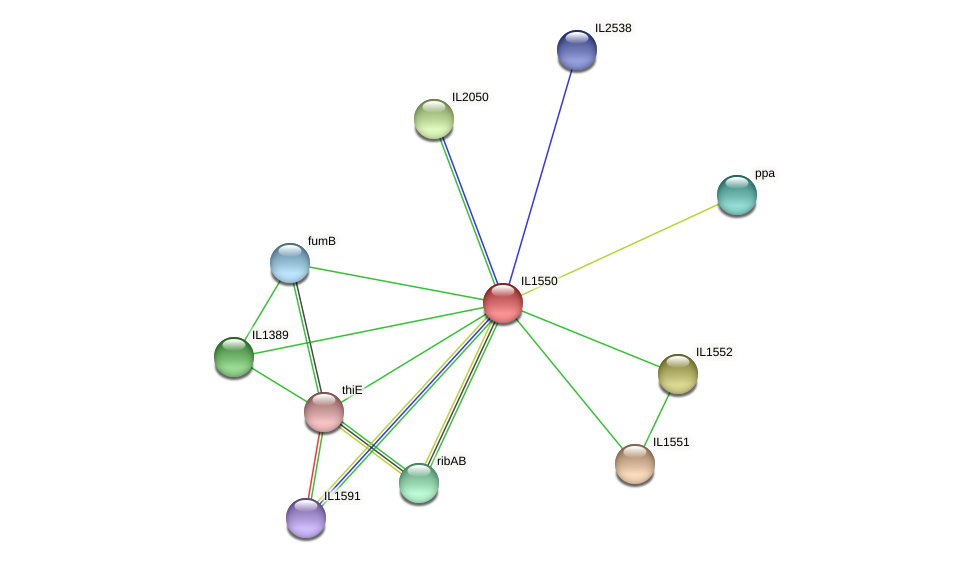 IL1550 protein (Idiomarina loihiensis) - STRING interaction network
