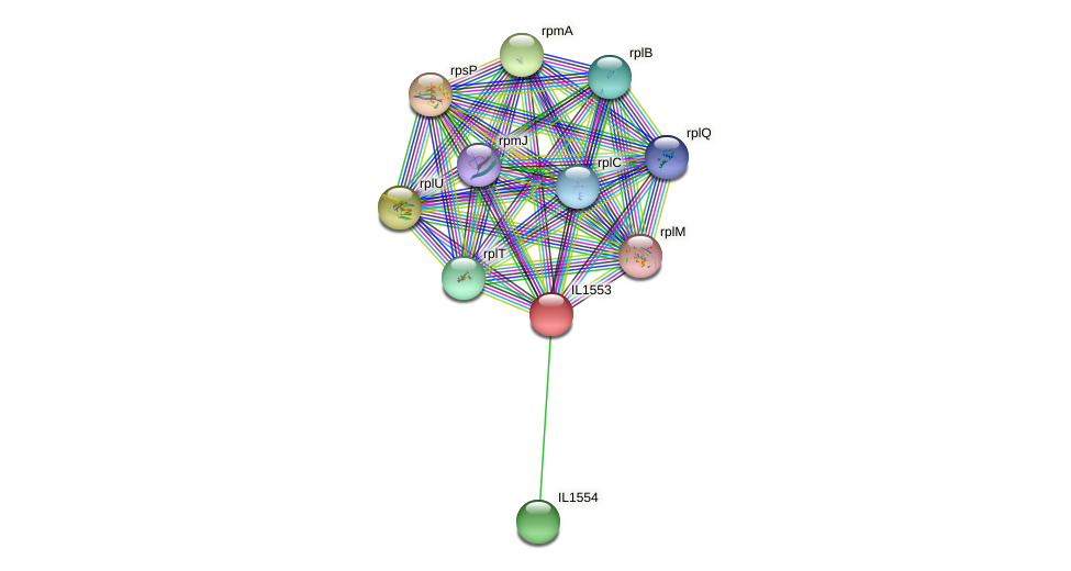 IL1553 protein (Idiomarina loihiensis) - STRING interaction network
