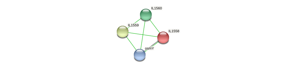 IL1558 protein (Idiomarina loihiensis) - STRING interaction network