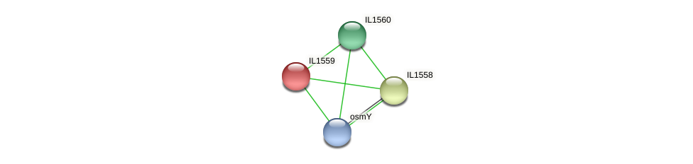 IL1559 protein (Idiomarina loihiensis) - STRING interaction network
