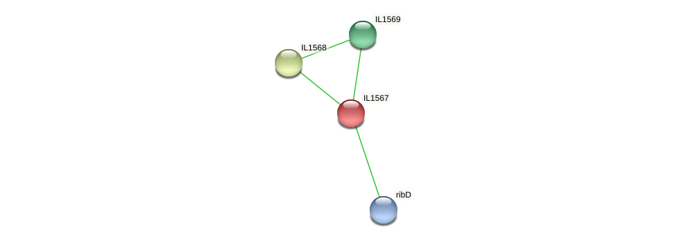 IL1567 protein (Idiomarina loihiensis) - STRING interaction network