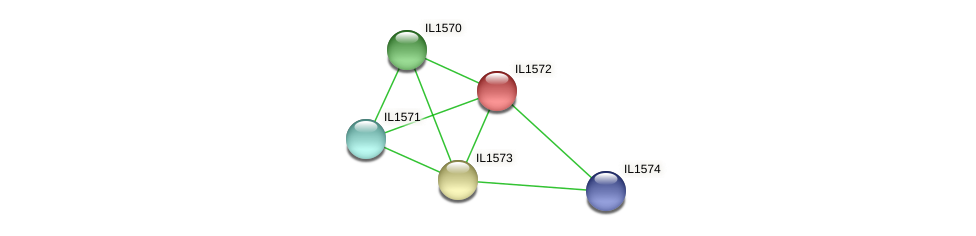 IL1572 protein (Idiomarina loihiensis) - STRING interaction network